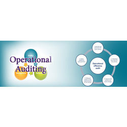 A New Dimension In Operational Auditing