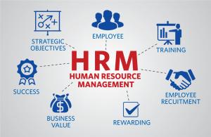 pelatihan The Comprehensive Guide to HR Management