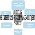 training Auditing the Enterprise Risk Management (ERM) Process