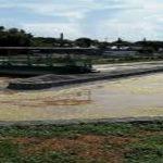 training Manajemen dan Pengolahan Air Limbah